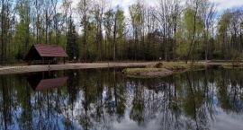 Oczko wodne w Lesie Sobieskiego - nowe miejsce relaksu w Wawrze