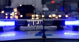 Dziupla samochodowa zlikwidowana, jej właściciel w areszcie